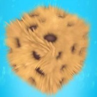 Cookie 1