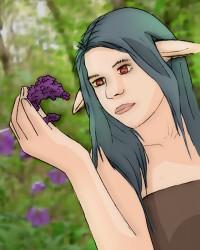 Nazra Blumenpflege
