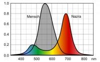 Nazra Farbspektrum